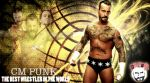 WWE CM Punk Evolution Walll by Gogeta126