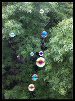 Soap Bubbles by Siobhan68