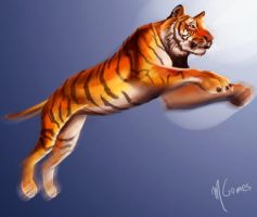 Jumping Tiger by m-gomes