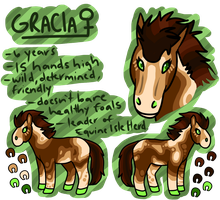 Gracia Ref Sheet by lord-pinkerton