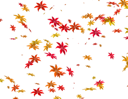 falling flowers png transparent by TheArtist100