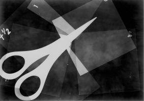 Contrasting Objects photogram by Makin237