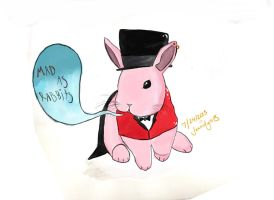 Mad as Rabits by Panic4MCR