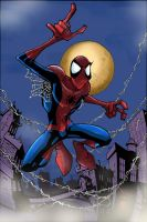 Spiderman Colored by iamthemiggy