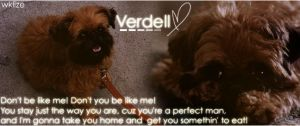 Verdell by WKLIZE