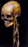 Cool scull by maurice