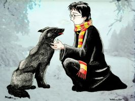 Harry Potter and Sirius Black by ChibiThekla