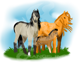 CinnamonPrincess and Wanderer with Foal by AmzyTheChangeling