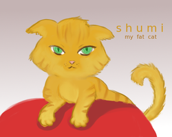 Shumi by aibite