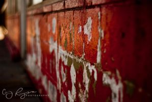 The Red by creynolds25