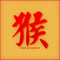 Year of the Monkey by Frostola