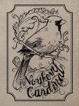 Northern Cardinal Ink by yolque