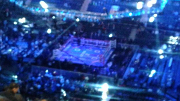 The Boxing Ring (zoomed in) by codythebear326