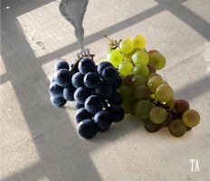 Grapes and Fork by tkrewson