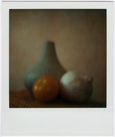 painted still life in polaroid by equivoque
