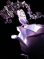 Rose, butterfly and music by ndina84
