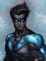 Nightwing by sennar86