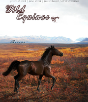 BANNER: Wild Equines Fall Entry 2 by YourArchAngel