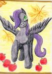 ACEO: A pony by Cheetahbird