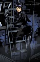 Catwoman by Martheus by martheus