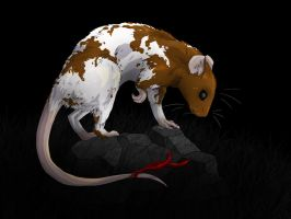 Charles the ratty rat by kuiwi
