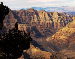 Grand Canyon 26 by abelamario