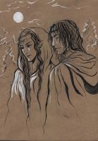 Arwen and Aragorn by Erika-Xero