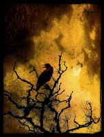 Mortal Skies by IrondoomDesign