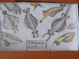 Anomalocaris and friends by RaptorGorilla