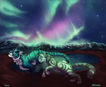 In the Land of Dancing Lights by MBPanther
