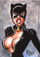 Catwoman Sketch Card 112911 by ChrisMcJunkin