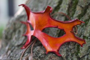 Orange Oak Leaf Leather Mask by OsborneArts