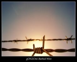 Barbed Wire by gONZOm