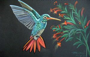 Hummingbird 1 by HouseofChabrier