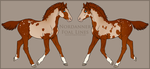 Nordanner Foal #9145 by soulswitch