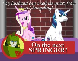Next On Springer by MLP-Silver-Quill