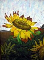 Sunflower by infamy