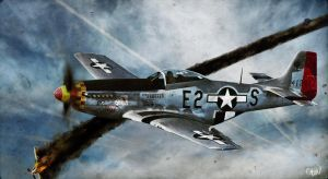 'Aces Wild' P-51 Mustang by wilson419