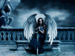 Dark angel by mpsapfir