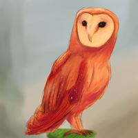 Another Owl by K-EAR-AH