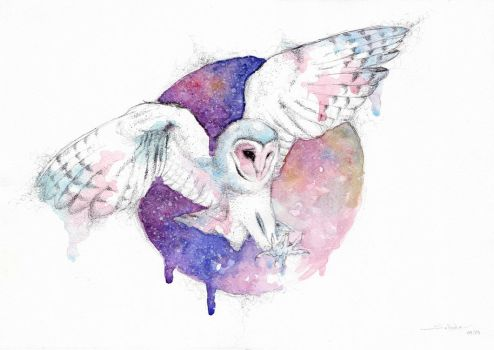 Owl and night new by SophiaViolette