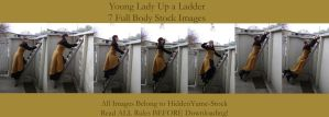 Young Lady Up a Ladder Pack by HiddenYume-stock