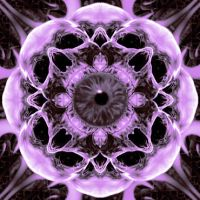i can see a purple flower by morganian