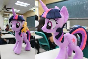 Twilight Sparkle plush at school by nekokevin