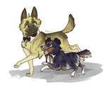 drrr dogs- shizuo and akane by BreyerKat
