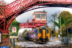 Wylam - Nov 12 by neonwilderness