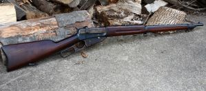 Winchester Model 1895 by PLutonius