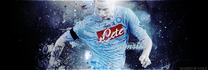 Hamsik by madeinjungle