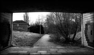 Under the road mono by Rozrr