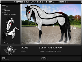 SRS Insane Asylum by Skyridge-Stables
